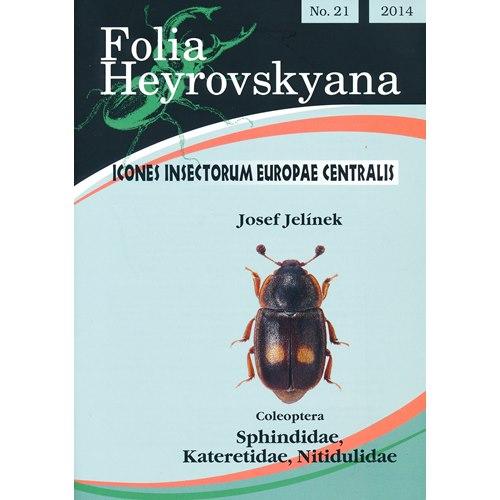 Nitidulidae (Glansbaggar) FHB 21 (Jelinek, J.)