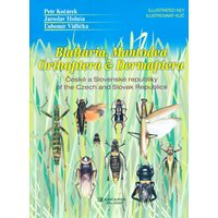 Blattaria, Mantodea, Orthoptera & Dermaptera of the Czech..