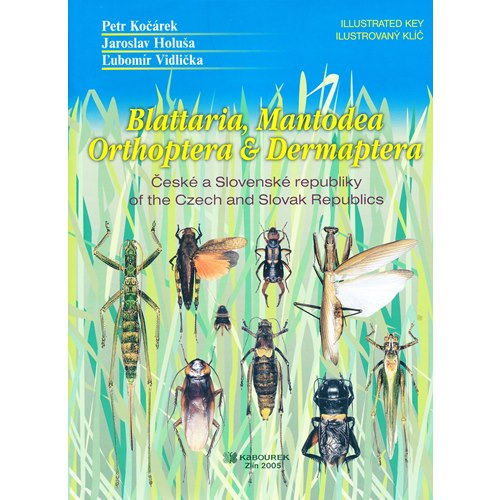 Blattaria, Mantodea, Orthoptera & Dermaptera of the Czech..
