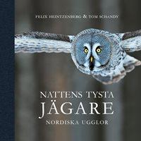 Nattens tysta Jägare - Nordiska ugglor (Heintzenberg & Schan..)