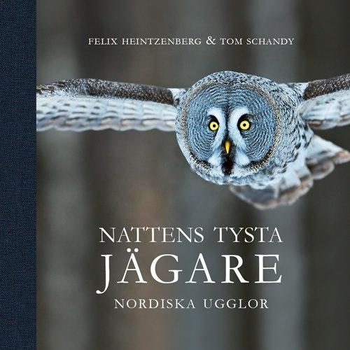 Nattens tysta Jägare - Nordiska ugglor (Heintzenberg & Schan