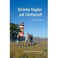 Skåda fåglar på Gotland (GOF/Smitterberg)