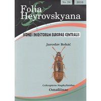 Staphylinidae, Omaliinae(stinkkortvingar) FHB 24 (Bohác, J.)