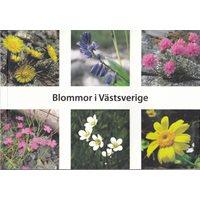 Blommor i Västsverige (Blomgren m.fl.)