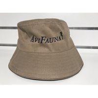 Hat Avifauna
