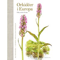 Orkidéer i Europa (Aerenlund Pedersen & Mossberg)