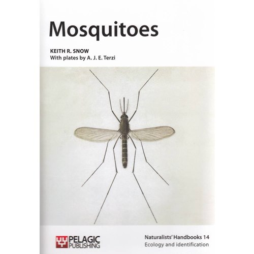 Mosquitoes (Snow)