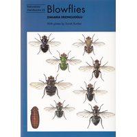 Blowflies (Erzinclioglu)