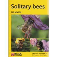 Solitary bees (Benton)