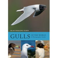 Gulls of the world (Malling Olsen)