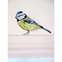 Sticker Blue Tit, sitting