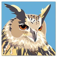 Double Card Eagle Owl