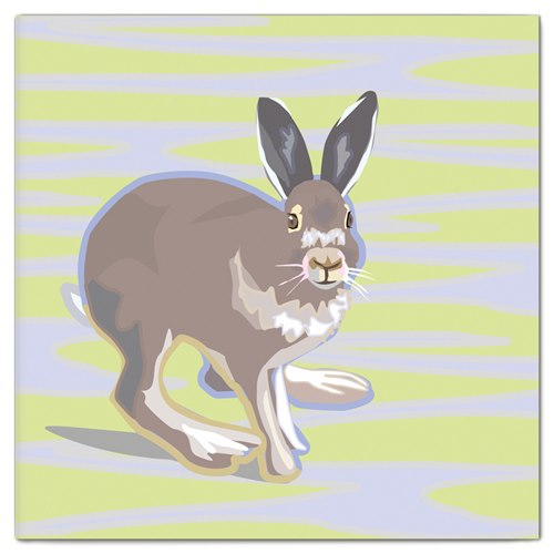 Double Card Hare