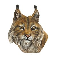 Magnet Lynx