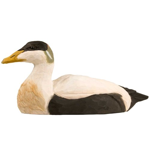 Common Eider Duck, Wood Carving