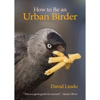 How to be an Urban Birder (Lindo)