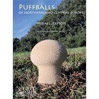 Puffballs/Röksvamp (Jeppson)