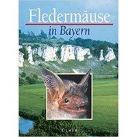 Fledermäuse in Bayern (Meschede)