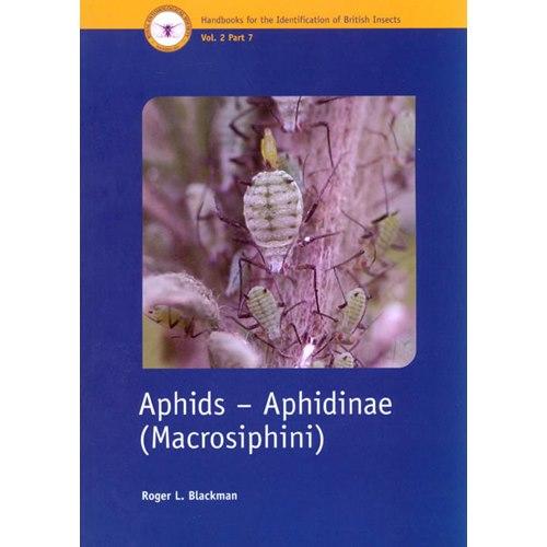 Aphids - Aphidinae-Macrosiphini (Blackman)