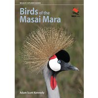 Birds of the Masai Mara (Kennedy)