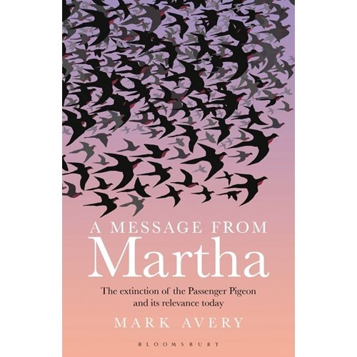 A message from Martha (Avery)