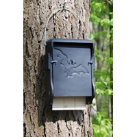 Bat Box Woodcrete 1FF Large