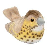Pipfågel Taltrast