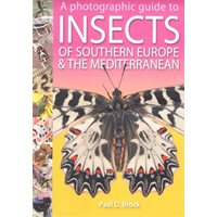 A Guide to Insects of Southern Europe & the Mediterranean
