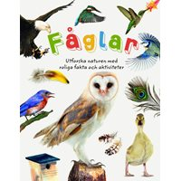 Fåglar - Utforska naturen med roliga fakta och aktiviteter