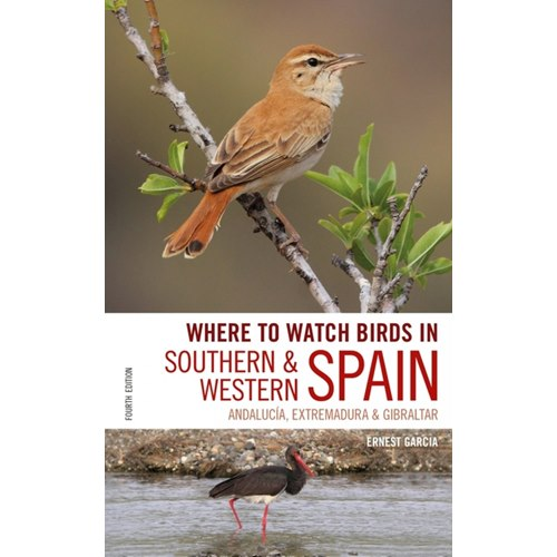 Where to Watch Birds in Southern and Western Spain 2:a