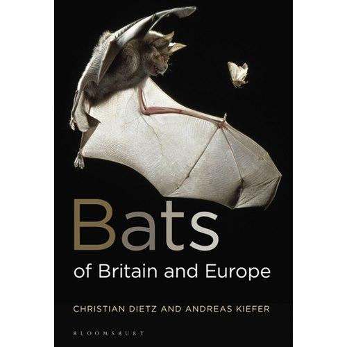 Bats of Britain and Europe 2:a upplagan(Dietz & Kiefer)