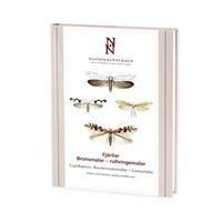 Fjärilar: Bronsmalar - rullvingemalar (Bengtsson) Nationalnyckeln
