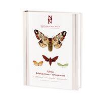 Fjärilar: Ädelspinnare-tofsspinnare (Hydén...) Nationalnyckeln