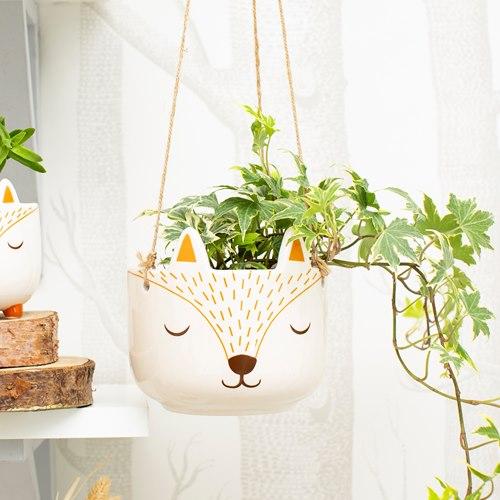 Fox, pot hanging