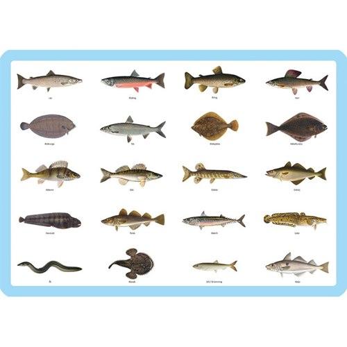 Bordstablett Svenska fiskar