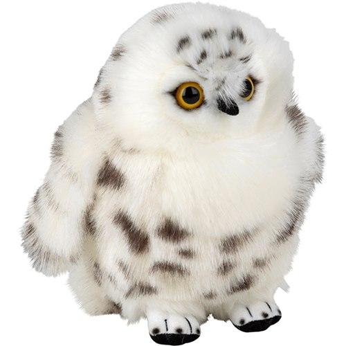 Soft Arctic Owl, PLAN
