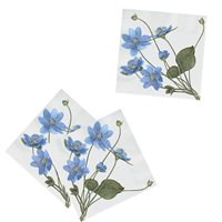 Napkin Common Hepatica