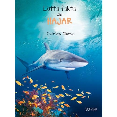 Lätta fakta om hajar