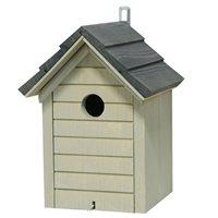 Holk småfågel, grått tak