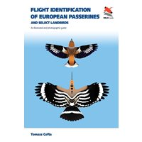 Flight Identification of European Passerines